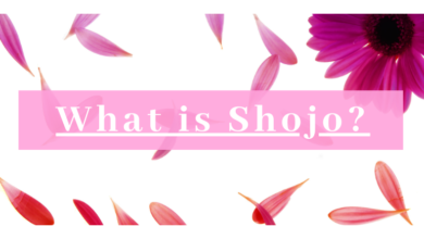 Photo of What Is Shojo?
