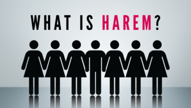What is Harem?